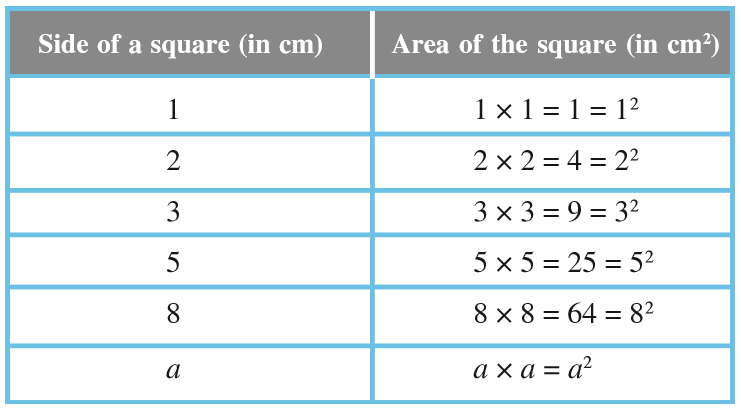 Squares And Square Roots Ncert Class 8 Maths Is 225 a perfect square? squares and square roots ncert class